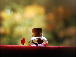 如何树立正确的婚恋观?关于我的婚恋观看法