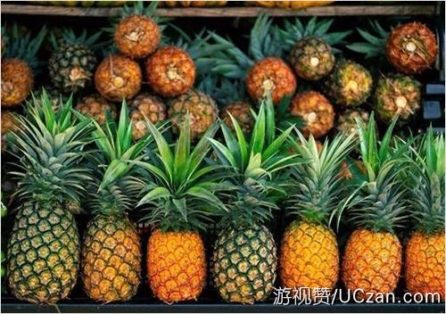凤梨和菠萝的区别,记住这几点就行了